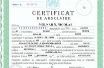 Certificat ERSF Molnar Nicolae